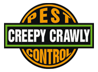 Creepy Crawly